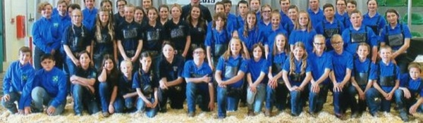 Timed Drayton Valley 4-H Beef Interclub Calf Sale