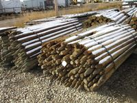 (2) 150 Pieces 2-3 In. x 8 Ft Poles