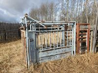 Pearson Cattle Squeeze with Palpation Cage