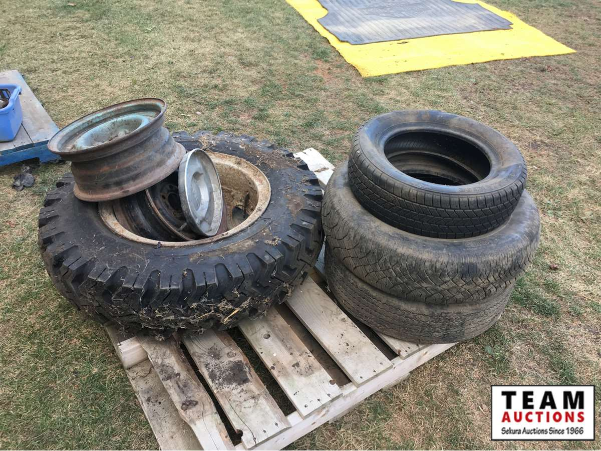 Ford 8.25-20 Tire & Rim & Misc Tires